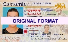 california fakeid, fakeid california, novelty id california