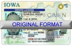 Iowa Fake ID Template Large