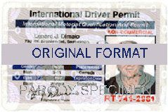 fake id international scannable drivers fake license