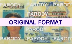 LOUISIANA FAKE ID CARD, SCANNABLE FAKE IDS LOUISIANA, BUY LOUISIANA FAKEIDS AND FAKE IDENTIFICATION