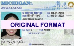 MICHIGAN FAKE IDS SCANNABLE FAKE MICHIGAN ID WITH HOLOGRAMS