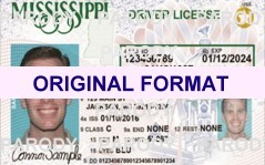 MISSISSIPPI FAKE IDS SCANNABLE FAKE MISSISSIPPI ID WITH HOLOGRAMS