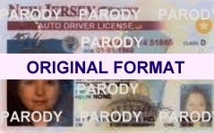 NEW JERSEY FAKE IDS SCANNABLE FAKE NEW JERSEY ID WITH HOLOGRAMS